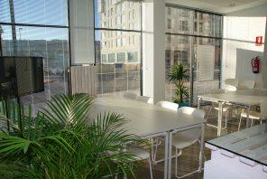apartment-architecture-business-221537